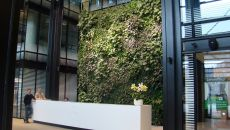 Green Design: Vertical Gardens – How To Keep Nature Close?